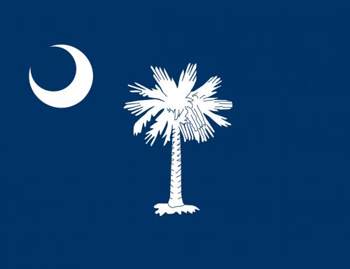 #4 South Carolina: la Battaglia di Fort Sumter (1861)